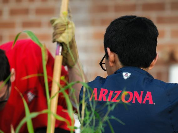 2 UA students using gardening tools at a volunteering event