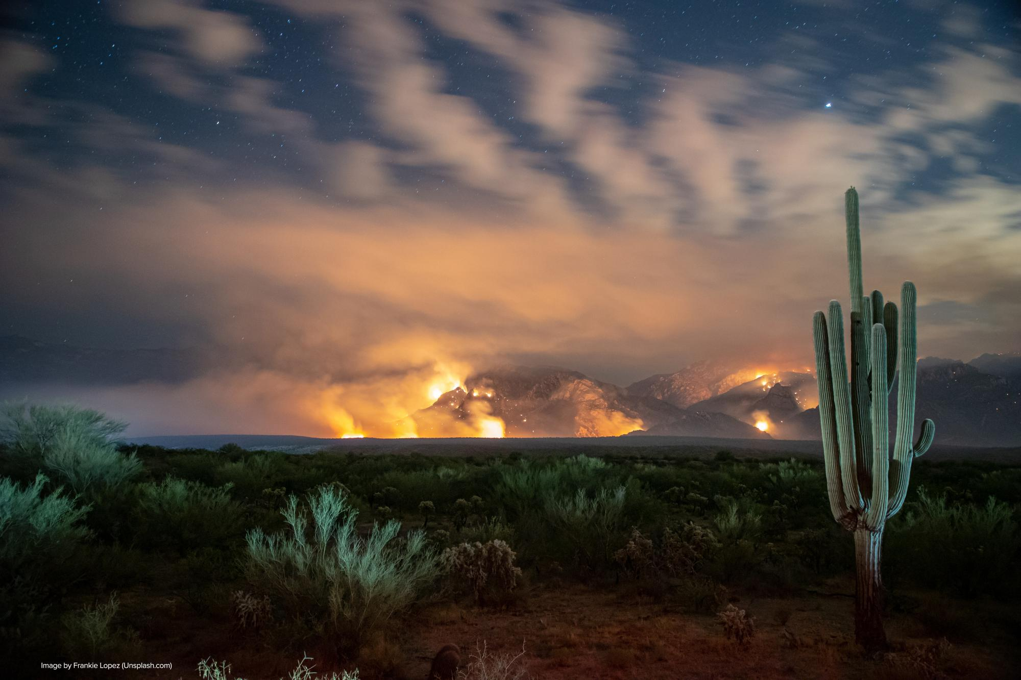 mountain on fire with cactus in foreground